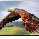 Advertising Led Displayer Supplier 2K 1080P Full HD 42