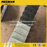 Hot Sale WP6 Diesel Engine Spare Parts 13056109 13056110 Connecting rod bearing Image