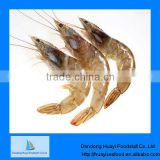 frozen shrimp red shrimp