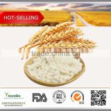 High quality Hydrolyzed Wheat Protein 80%(Vegetable protein)