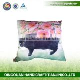QQ Pet Factory Wholesale Inflatabel Back Support Throw Pillow Fashion Cat Printing Pillows