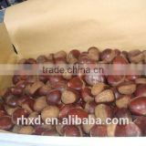 2015 healthy snack roasting chestnuts/vacuum packed organic dried peeled and roasted sweet chestnuts