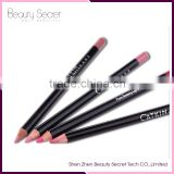 OEM No Logo Custom Private Label Waterproof Pencil Shape Lip Liner longlasting hot sale Lip Pencil