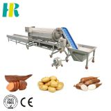 Potato processing line for washing peeling