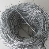 Cheap Price Galvanized Barbed Wire