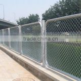 Dark Green Decorative garden welded wire mesh fencing                                                                                                         Supplier's Choice