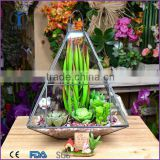 home indoor decoration Geometric clear glass plant terrarium