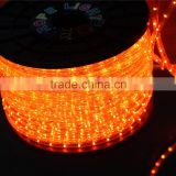 11mm 2wires 30leds 110v led flexible hose light