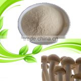 Totally natural non-allergic mushroom chitosan wound dressing for vegan