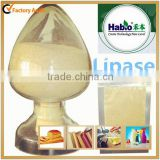 lipase enzyme for bakery ,lipase powder