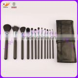 Professional Cosmetic Brush Set with Powder/Blusher/Foundation/Eyeshadow/Lip Brushes