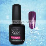 V.chlo 15ml nail gel supplies uv cat eyes gel polish
