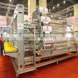 high quality automatic egg collection A type hot galvanized & electric galvanzied chicken egg layer cages chicken cage