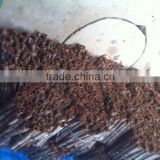 Vietnam split cassia / cinnamon - thin split cassia, high oil content, reddish color in new drop