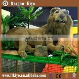 Lion The King of The Forest Life Size Animal
