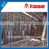 Automatic fruit washing machine manufactured in Wuxi Kaae with ISO and CE