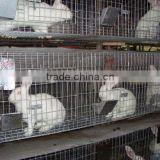 anping china manufacturer 3 story plastic rabbit cage battery farming cage industrial in kenya farm trays