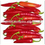 Sell Fresh Chilli