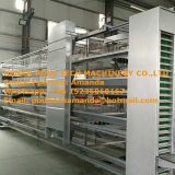 H Frame Full Automatic  Layer Chicken Cage Equipment Used in Chicken House for Poultry Farming