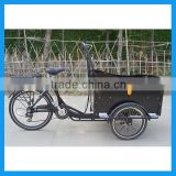 Aluminium Alloy Frame Electric Cargo Bicycle