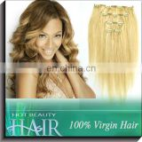 Clip On Hair Pieces 100% 613 24 inch Human Hair Clip Extension