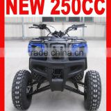 EEC 250CC ATV QUAD BIKE(MC-352)