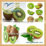 Nutrition Supplement Food Additive Kiwifruit Powder Freeze Dried