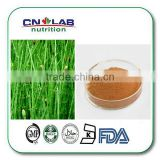 Factory supply horsetail seeds/marestail/field horsetail/Bottlebrush/meadow pine extract powder