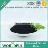 China Supplier High Concentrated Black Seaweed Extract Flake For Fertilizer Seaweed Extract