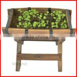 Elevated Wooden Garden Planters for Vegetable, Herb and Flower Planting