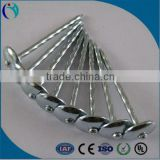 Competitive Zinc Roofing nail With Umbrella Head                                                                         Quality Choice