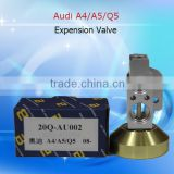 Auto air conditioner parts for Audi A4/A6/Q5 Expension vave,H-type Auto Air Conditioning Aluminium Expansion Valve