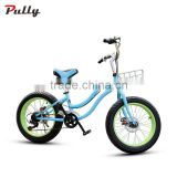 20 inch cruiser bike with fat tire