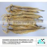 Dried bombay duck fish supplier