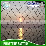 Anti bird Net for Agriculture china supplier