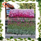 Latest design garden suplies artificial green grass wall/ flower wall/ vertical grass wall for landscaping