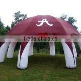 Inquiry About Commercial grade inflatable advertising dome tent advertisement promotion and tents rental