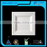 Sugarcane bagasse pulp moulded fiber square plate with 3 size                                                                         Quality Choice