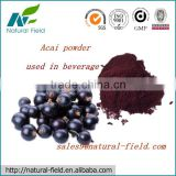 acai berry powder raw material import from brazil