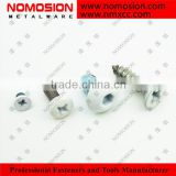 C1006 flat head with white baking finished self tapping screw                                                                         Quality Choice