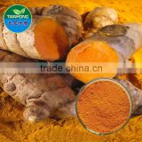 2015 China Manufacturer Pure Natural High Quality Curcumin, Curcumin Extract, Curcumin Extract 95%
