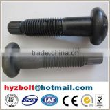 High Tensile Strength Bolt with Nut and Washer of Torshear Type Grade 10.9