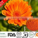 Organic supplier marigold flower extract lutein and zeaxanthin