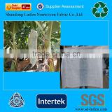 Protected Paper Nonwoven Fabric Banana Cover