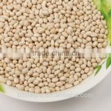 white kidney bean,navy bean on sale