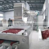 Industrial tunnel type microwave red dates dryer & sterilizer