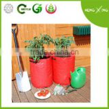 PE vegetable/tomato/potato planter
