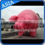 inflatable promotion materials display / inflatable giant flying pig for advertising