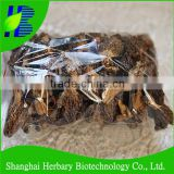 2016 Hot selling <b>Yunnan</b> dried Morchella