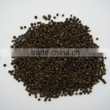 Vietnam Black pepper ASTA unsteamed 500g/l